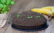 Schokoladiger Maulwurfkuchen: Himmlisch leckeres Rezept