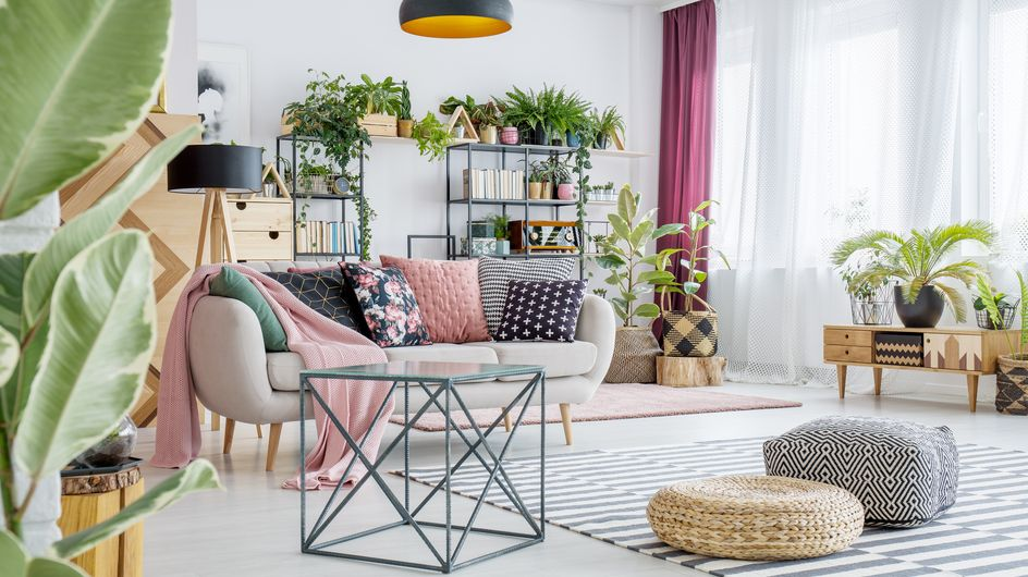 Le piante più eleganti da appartamento per arredare la tua casa con stile