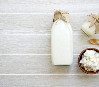 Kefir di latte: tutti i benefici del latte fermentato prodotto da granuli di kef