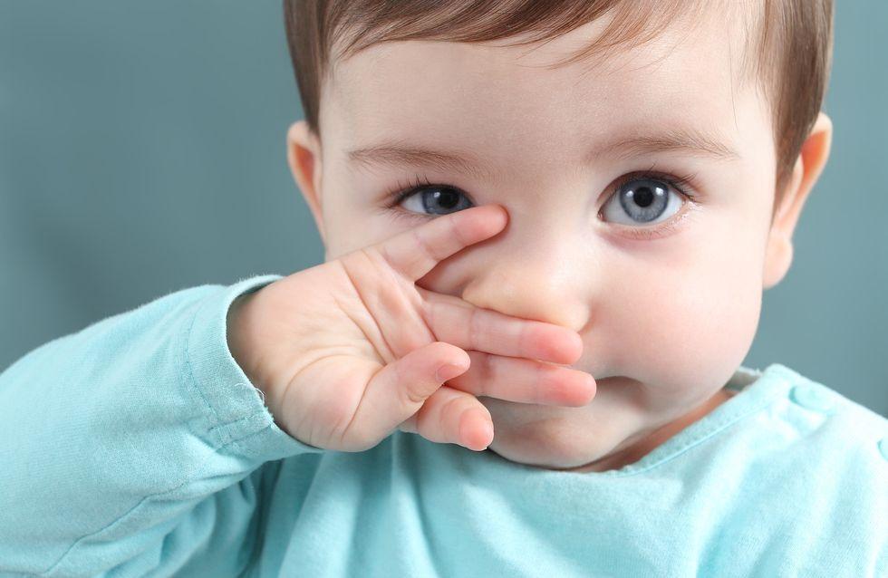 Efficacité, utilisation, nettoyage : Top 6 des meilleurs mouche-bébés