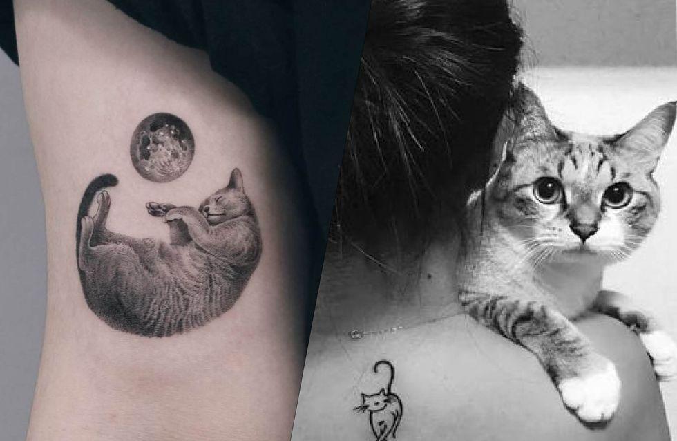 Tatouage : diverses inspirations pour les amoureux des chats !