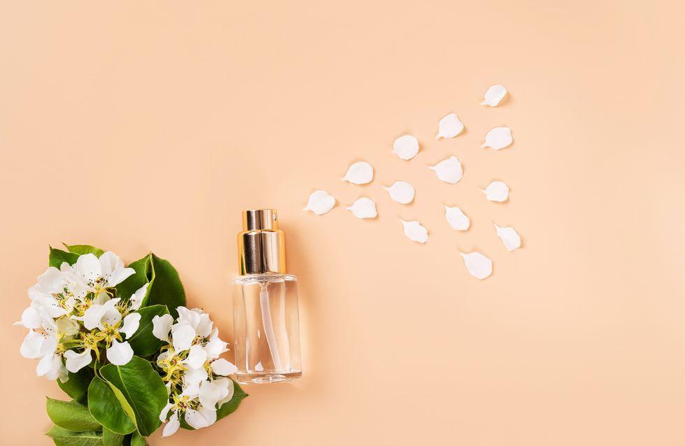 Singles Day 2020: So günstig sind heute Parfums bei Douglas