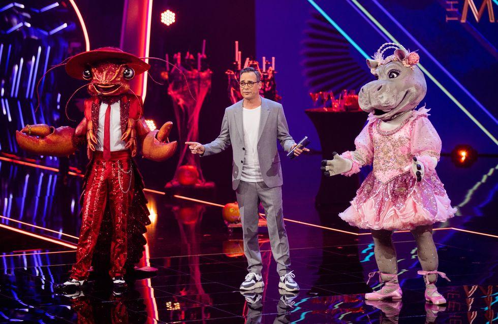 """Shitstorm für """"The Masked Singer"""": Fans sind stinksauer"""