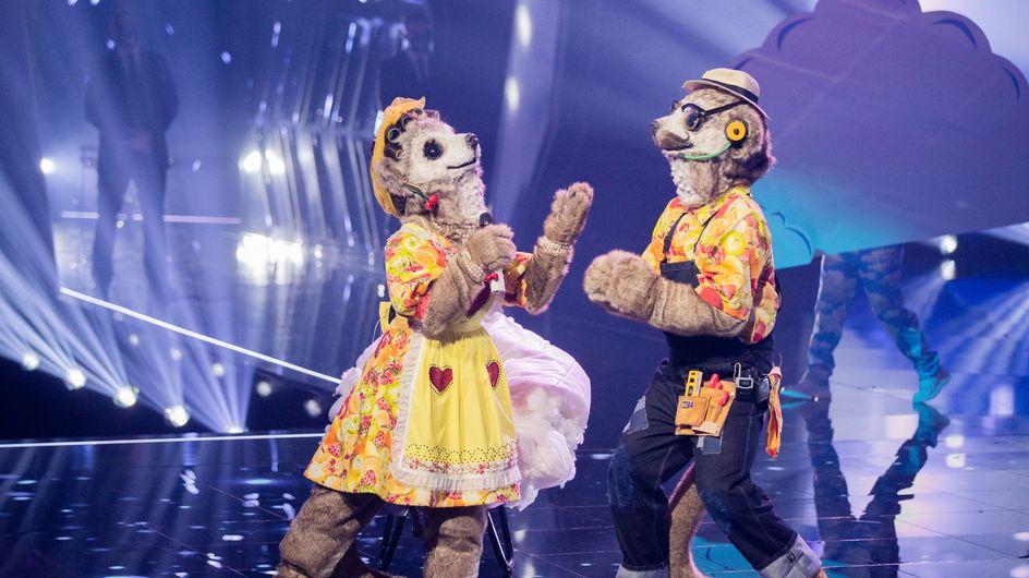 The Masked Singer: Haben sich Daniela und Lucas selbst verraten?