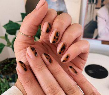 Tuto nail art facile : la manucure façon écailles de tortue