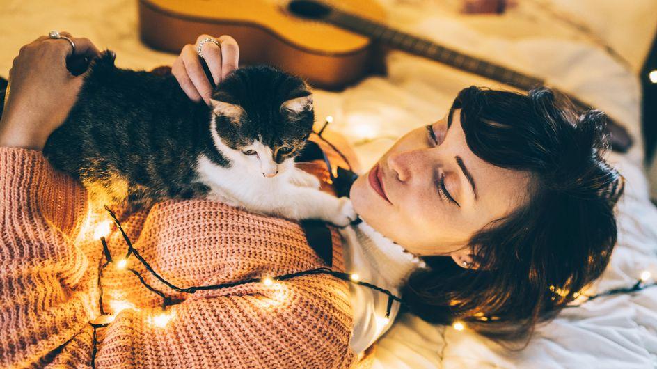 Étude : oui, votre chat vous prend pour sa mère