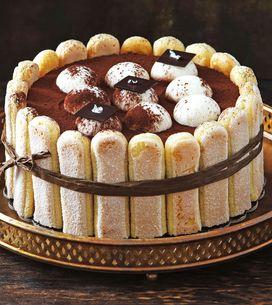 Tiramisu-Torte: So einfach wird das Kult-Dessert zum Kuchen