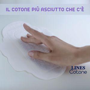 Lines cotone: perché lo amiamo!