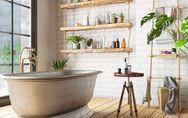 Piante da bagno: un complemento d'arredo in grado di assorbire l'umidità