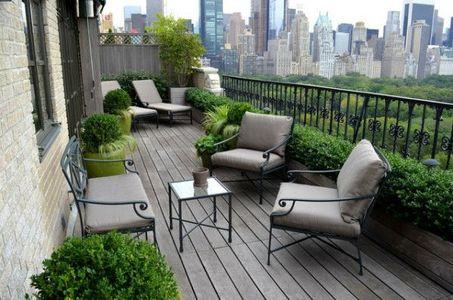 piante da terrazzo: il bosso a Ovest