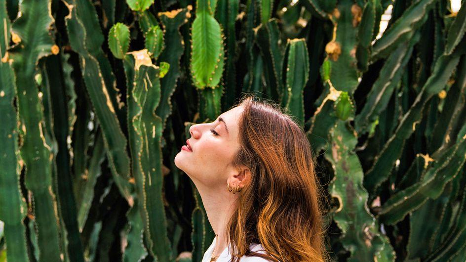¡Te revelamos la planta que corresponde a tu signo del zodiaco!