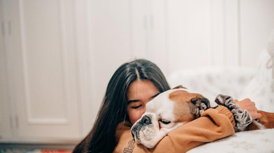 Cani da appartamento: le migliori razze tra cui scegliere!