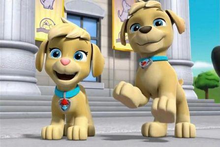 paw patrol nomi: Ella e Tuck