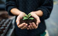 Compostaggio: una scelta sostenibile, pratica e conveniente