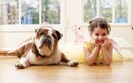 Cani, gatti o pesci rossi: quali sono gli animali domestici più adatti per i bam