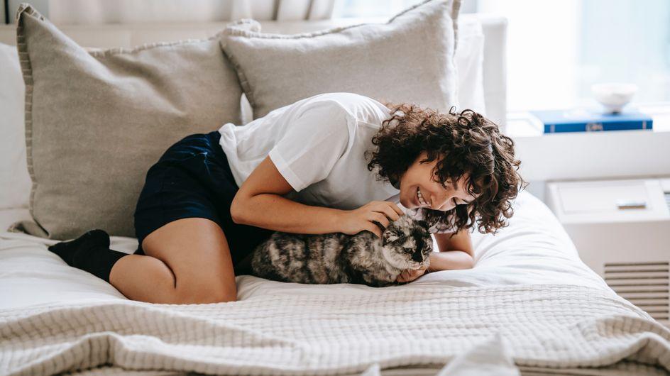 Marre des poils d'animaux dans la maison ? Cette brosse virale sur TikTok va vous sauver