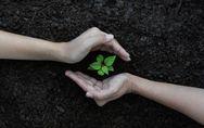 Alimentazione sostenibile: in che modo può aiutare a proteggere l'ambiente