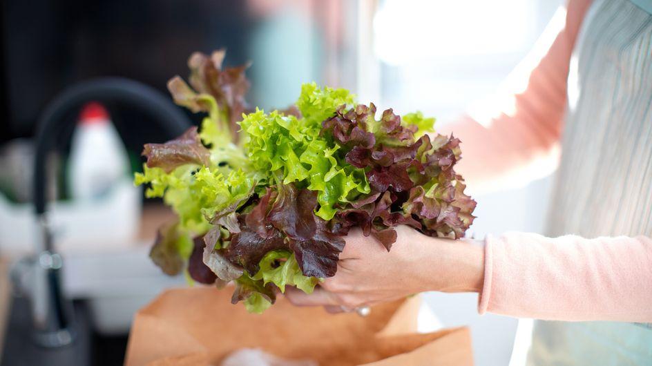 Comment conserver une salade verte ?