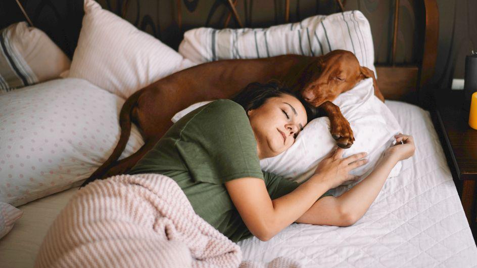 6 astuces pour mieux dormir d'après une étude de Harvard