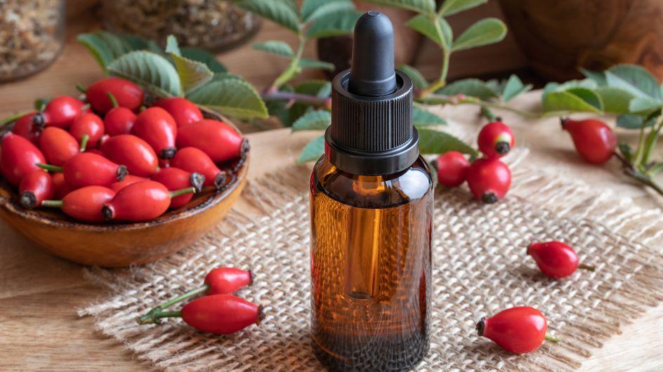 Olio di rosa mosqueta: proprietà, benefici e principali utilizzi
