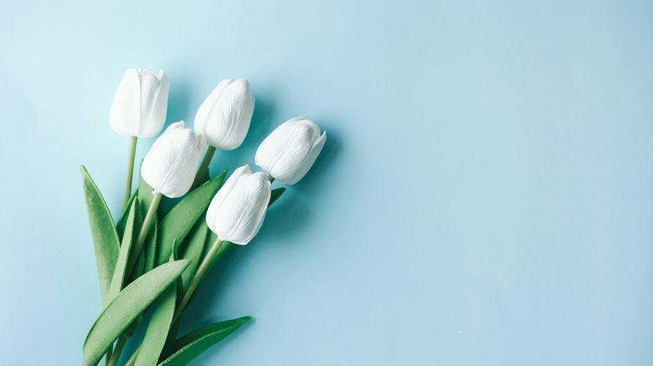 Frasi sui fiori: le migliori per celebrare il dono più prezioso della natura