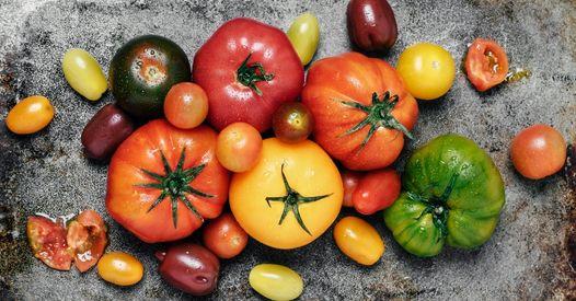 Tomates : quelles variétés pour quelles recettes ?