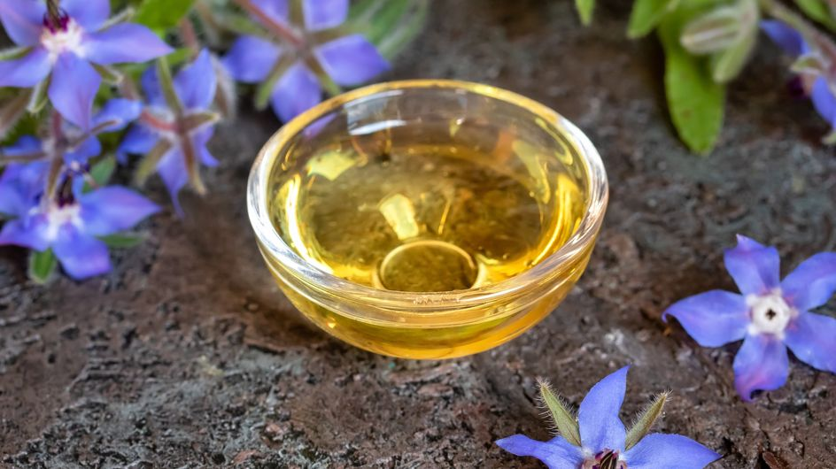 Olio di borragine: un alleato naturale per la nostra salute