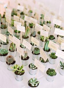 segnaposto matrimonio fai da te: piante grasse