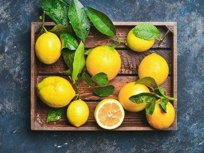 pianta di limone: la produzione è abbondante al Sud e sulle isole