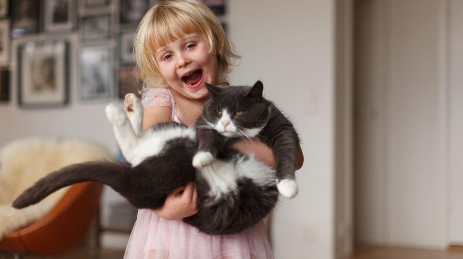 Votre chat pense que vous êtes vous-même un chat un poil bizarre