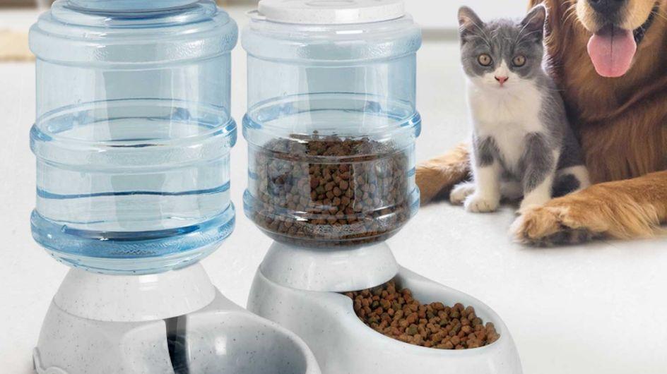 Bon plan - Un distributeur automatique croquettes et eau pour chat ou chien