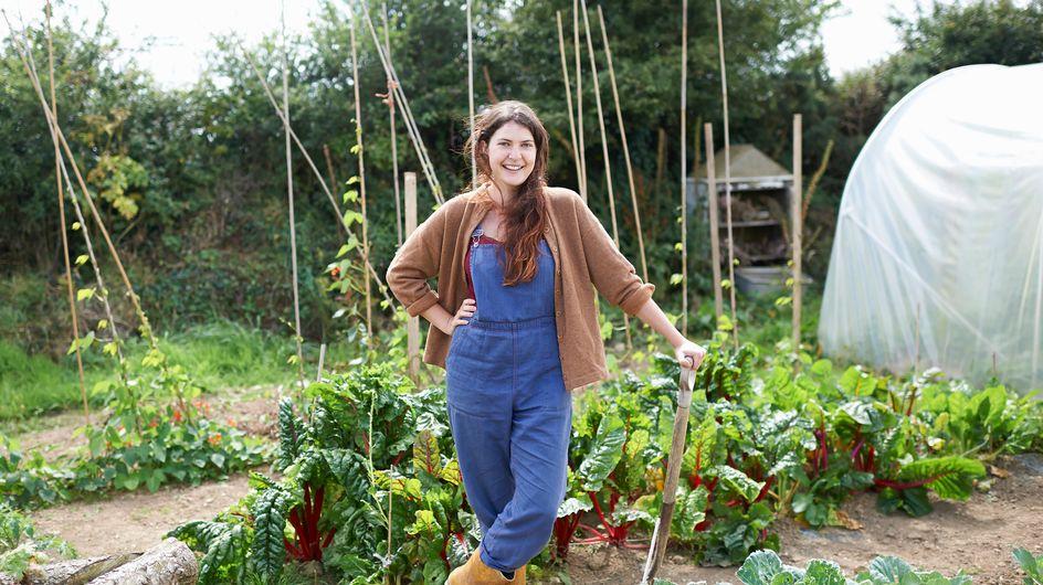Cosa piantare a settembre: le piante da seminare nell'orto
