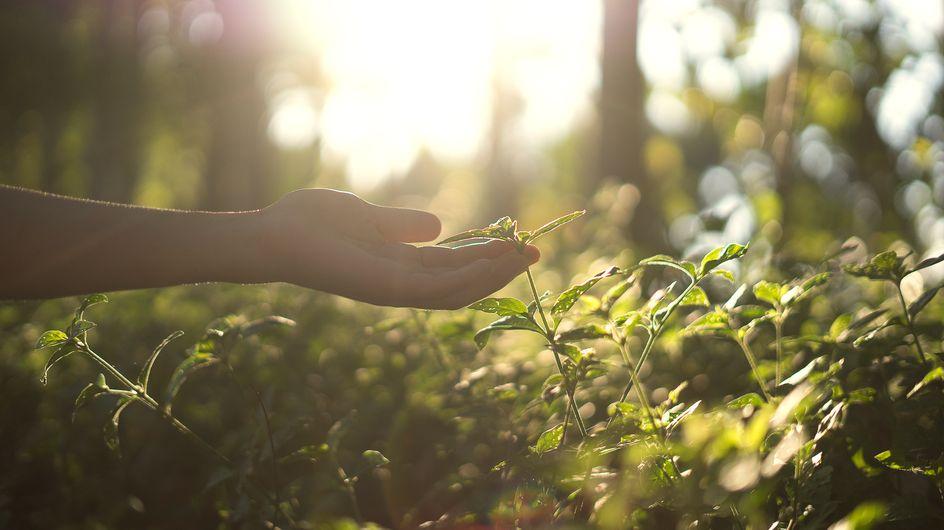 Jeûne hydrique : une femme meurt durant un stage de naturopathie