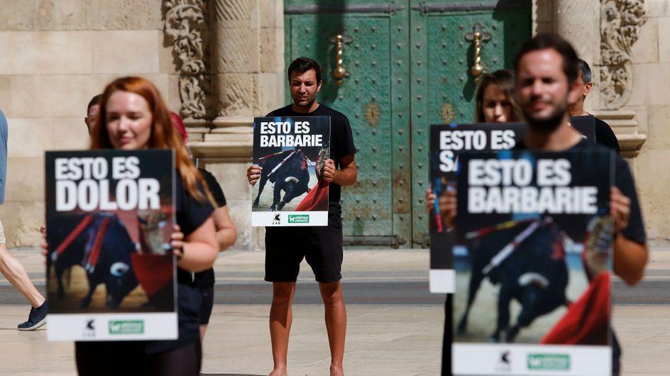 Corrida : la mise à mort de taureaux baptisés Féministe et Nigérian choque