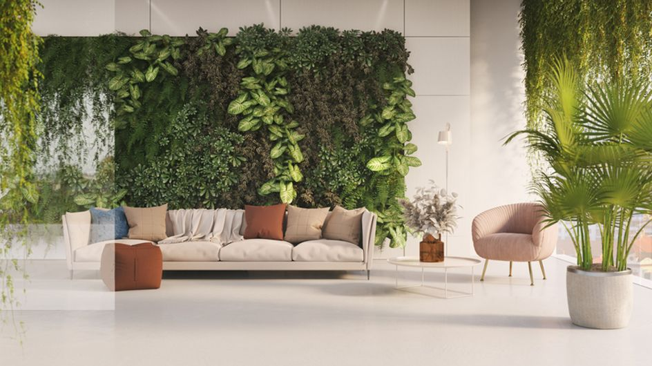 Piante ricadenti da interno: le più belle per rendere ogni appartamento un luogo speciale