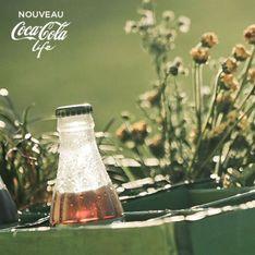 Avec l'extrait de stévia, découvrez le goût sucré sans les calories !
