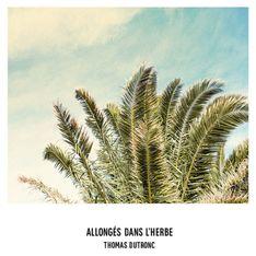 Allongés dans l'herbe, le nouveau clip de Thomas Dutronc en exclu !