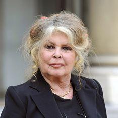 L'improbable lettre anti-fourrure de Brigitte Bardot au chat de Karl Lagerfeld