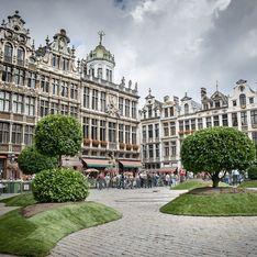 Flowertime 2015 : du 13 au 16 août des milliers de fleurs envahissent le cœur de Bruxelles