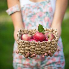 5 choses qu'on adore de la cueillette de pommes