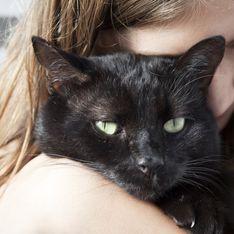 Comment faire le deuil d'un animal de compagnie