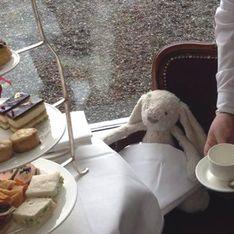 Le personnel d'un hôtel fait passer un séjour de rêve à un doudou oublié par une petite fille (Photos)