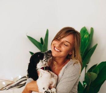 Test: ¿qué raza de perro va más con tu personalidad?