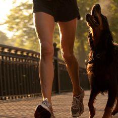 ¡Ellos te echan una pata! 8 increíbles beneficios de tener mascota