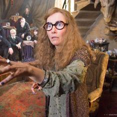 Arrêtez tout, il nous faut absolument ces palettes de make-up Harry Potter