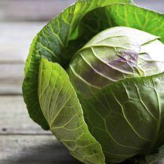 Cavolo: proprietà e benefici dell'ortaggio più nutriente e salutare