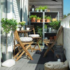 Je veux un potager sur mon balcon, comment faire ?