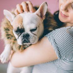 Redest du mit deinen Haustieren? DAS verrät es über dich!
