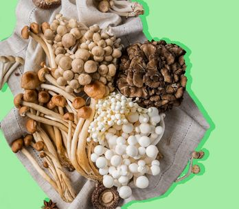 Os surpreendentes benefícios dos cogumelos