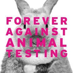 OUI ! The Body Shop lance une pétition mondiale pour interdire les tests sur les animaux